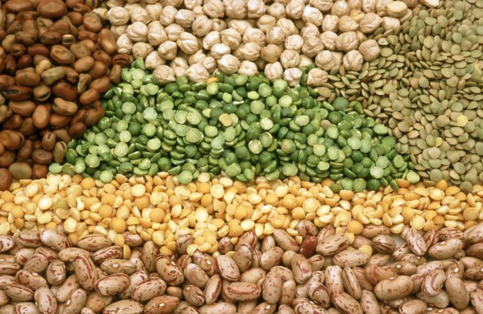 Pulses - Imported