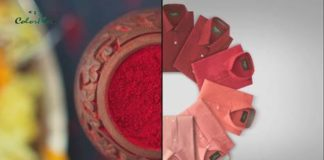 ColorPlus captures the hues of Durga Pujo, in their latest digital film